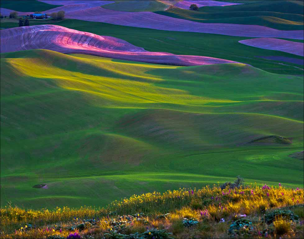 Afterglow at Steptoe Butte